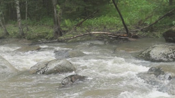 Tumultuous mountain river Footage