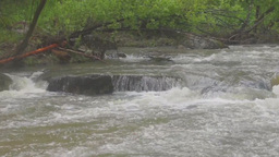 Stormy mountain river running over rocks Footage