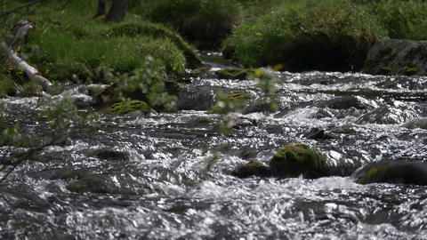Stream Course, Rippling Water stock footage