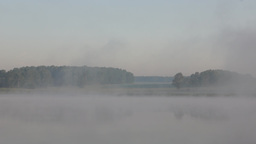 Summer morning landscape at the foggy lake Footage