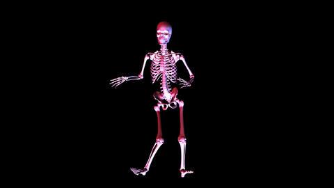 Skeleton posing Stock Video Footage
