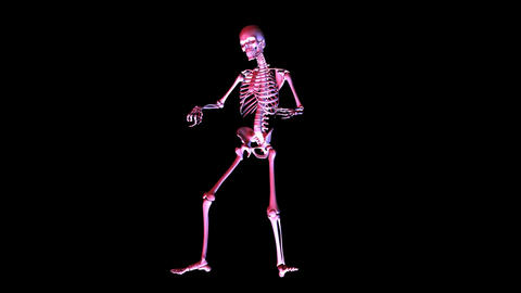 Skeleton posing Animation
