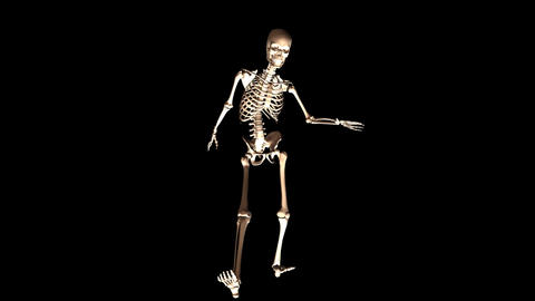 Skeleton posing Stock Video Footage