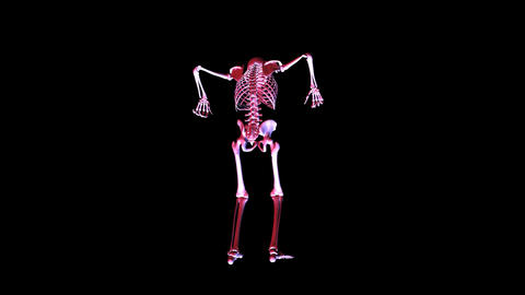 Skeleton posing Animation