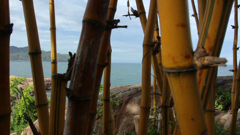 Bamboo, Sea And Mountains stock footage