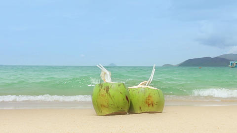 Coconuts on a Sandy Beach Footage
