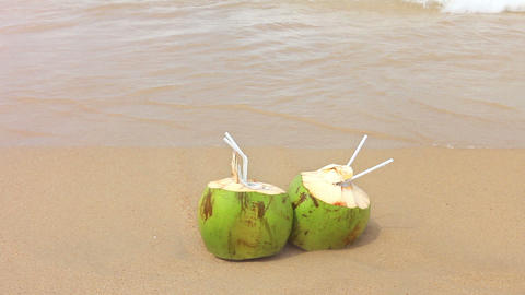 Coconuts on a Sandy Beach Stock Video Footage