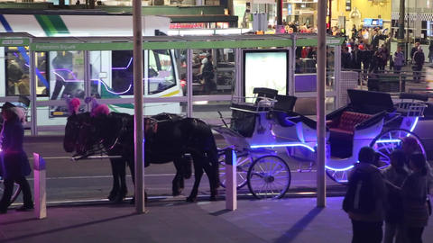 a neon lit horse carriage on flinders street feder Stock Video Footage