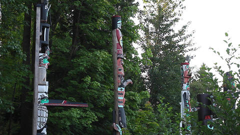 totem poles - stanley park side view HD Footage
