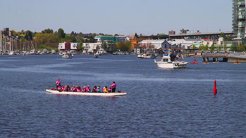 dragon boat team - false creek Footage