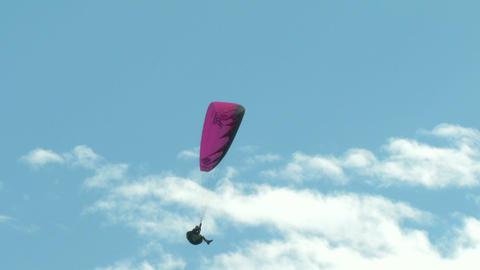 Acrobatic Paragliding Synchro Green Magenta 34 stock footage