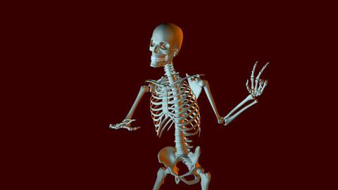 Dancing Skeleton Animation Animation