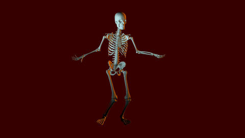 Dancing Skeleton Animation stock footage