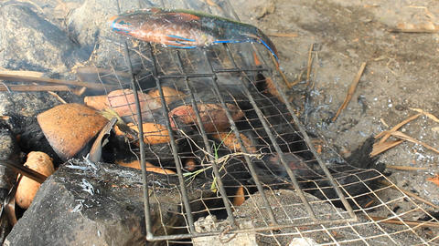 Grilling parrotfishes in the way of local food Footage