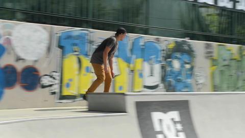 Alex Neto Stock Video Footage