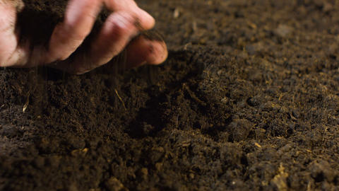 Hand with soil Stock Video Footage