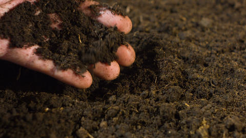 Hand with soil Footage