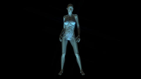 Animation Of The Human Anatomy stock footage