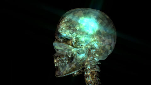 Animation Of A Human Skull stock footage