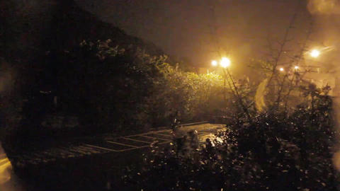Trees blowing during strong wind and rain in a typ Footage