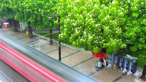 Rain on the Street of Istanbul and Flowering Chest Footage