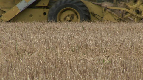 Stock Footage Agriculture Footage