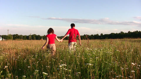 couple in field Stock Video Footage