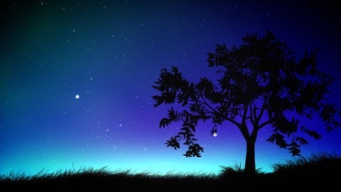 Night sky and tree loop Stock Video Footage