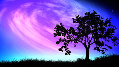 Night sky and tree loop Animación