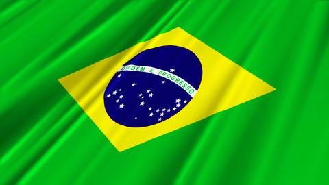 BrazilFlagLoop02 Stock Video Footage