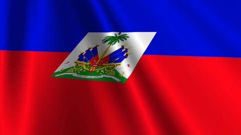HaitiFlagLoop03 Stock Video Footage