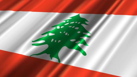LebanonFlagLoop02 Stock Video Footage