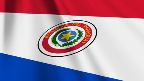 ParaguayFlagLoop03 Stock Video Footage