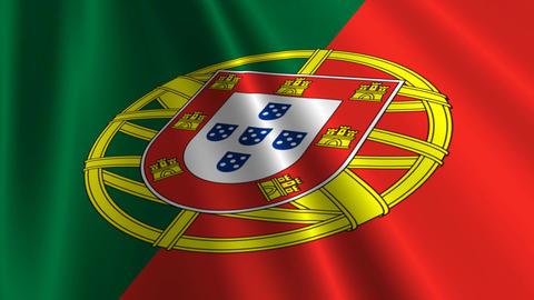 PortugalFlagLoop03 Stock Video Footage