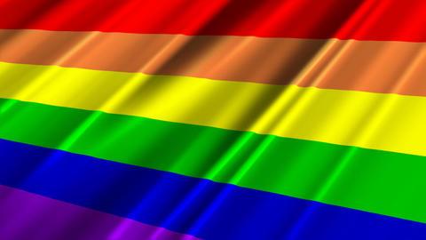 RainbowGayFlagLoop02 Stock Video Footage