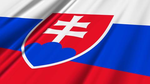 SlovakiaFlagLoop02 Stock Video Footage