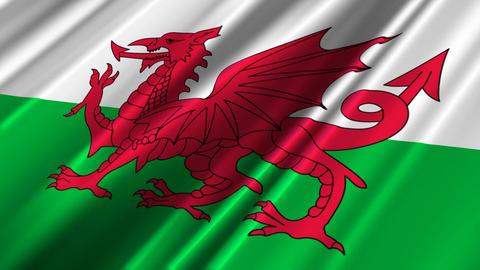 WalesFlagLoop02 Stock Video Footage
