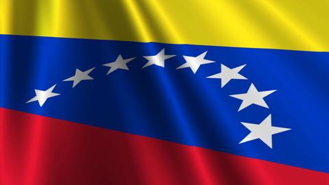 VenezuelaFlagLoop03 Stock Video Footage