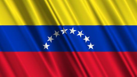 VenezuelaFlagLoop01 Stock Video Footage