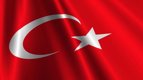 TurkeyFlagLoop03 Stock Video Footage