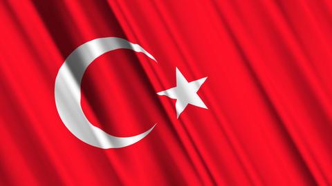 TurkeyFlagLoop01 Stock Video Footage