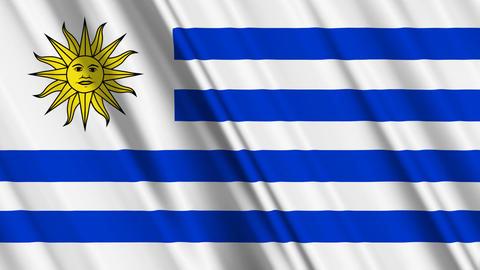 UruguayFlagLoop01 Stock Video Footage