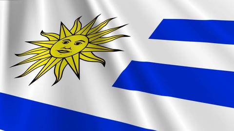 UruguayFlagLoop03 Stock Video Footage
