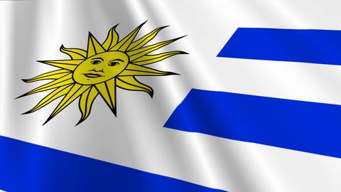 UruguayFlagLoop03 Animation