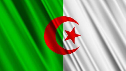 AlgeriaFlagLoop01 Stock Video Footage