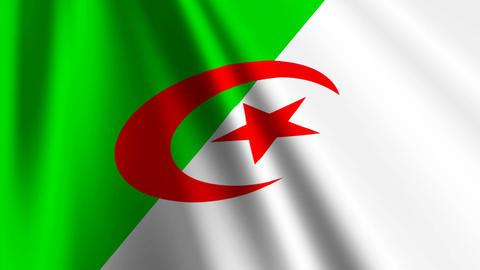 AlgeriaFlagLoop03 Stock Video Footage