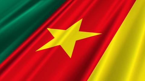 CameroonFlagLoop02 Stock Video Footage