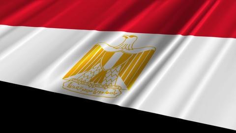 EgyptFlagLoop02 Stock Video Footage