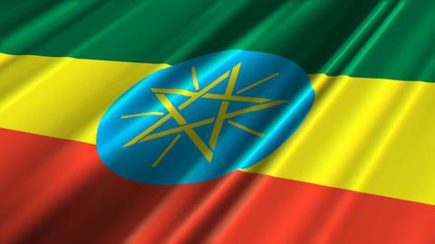 EthiopiaFlagLoop02 Stock Video Footage