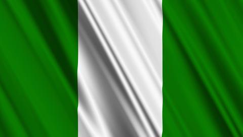 NigeriaFlagLoop01 Animation